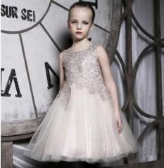 Newest Amber berry Girl Princess Dress, Evening dress Champagne A 100cm