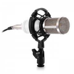 2Pcs Dynamic Condenser Wired Recording Microphone Sound Studio Mount for Recording Kit KTV Karaoke White Wired BM - 800