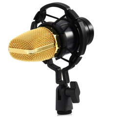 BM - 700 Condenser Sound Recording Microphone with Shock Mount Black One size none