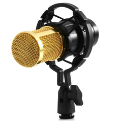 BM - 800 Condenser Sound Recording Microphone with Shock Mount Black One size None