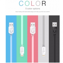 1m Usb Charger Cable 2.1A Fast Charging Cable  For iPhone 6 5 5s ipad