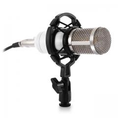 2Pcs Dynamic Condenser Wired Recording Microphone Sound Studio Mount for Recording Kit KTV Karaoke White Wired BM - 800