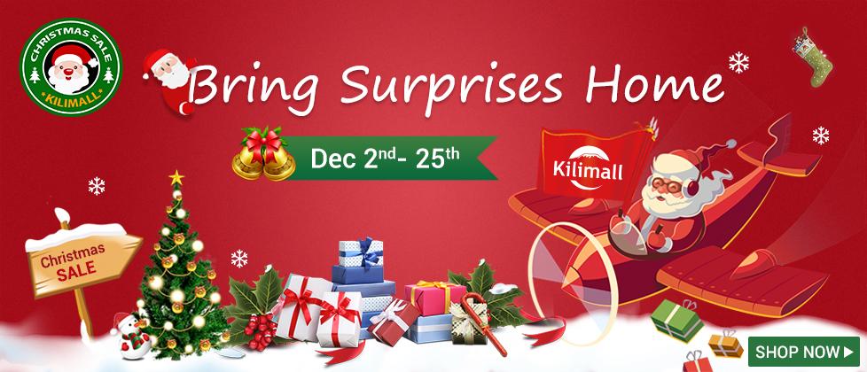 Christmas SALE-Surprise!