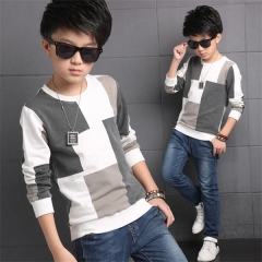 Casual All-Match Children Boys  T Shirts Plaid Cotton Long Sleeve Boys Tops Autumn Kids T-shirts As the picture 5T
