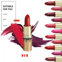 12 Colors Set Bullet Lipstick Lipstick Lips Waterproof Lipstick Long Lasting Brand Nude Cosmetic as picture