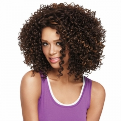 New Fashion Synthetic Wigs Hair Wigs Women's Wigs Hair Curly 14inch brown 14inch