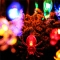LED Skull Ghost Shaped LED String Lights Decoration Halloween Indoor Outdoor Lights Soft spider-10LED