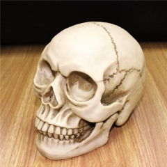 Haunted Mansion Halloween Party Creepy Skull Decoration white for festival
