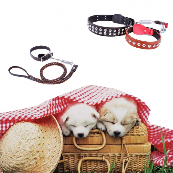 New Leather Large Dog Leashes Pet Traction Rope Collar belt Kit brown,m