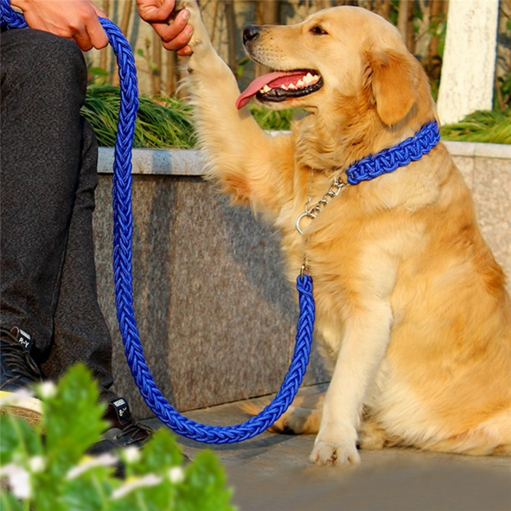 Pet Adjustable Nylon Dog Rope Slip Training Walking Leash Pet Collar Traction Rope for Large Dogs blue,m
