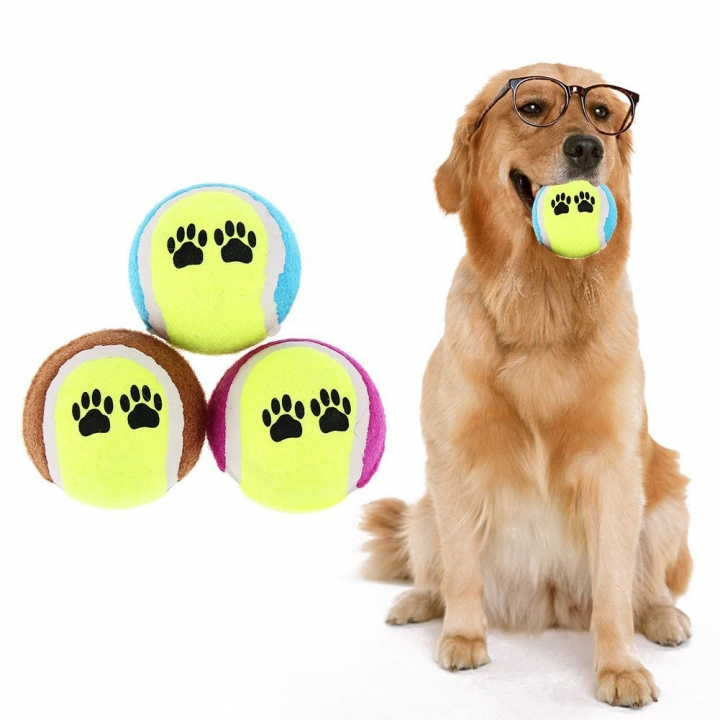 Pet Toy Throwing Tennis Ball Pet Dog Cat Bite Resistant Chew Toy Training Ball 10pc random color diameter 6.5cm