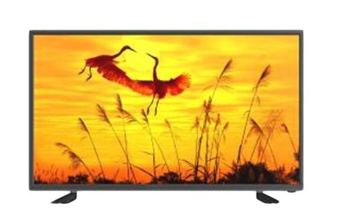 MCTV HD LED Display Digital Television - Black, 24 Inch TV