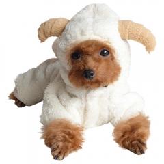 Sheep Pet clothes Dog Clothes Pet Supplies Keep Warm pet Transformed Dress white xs
