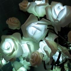 led Rose Lantern Flashing light bedroom decoration Party Marriage room romantic light post white battery 1.5 m 10 lights