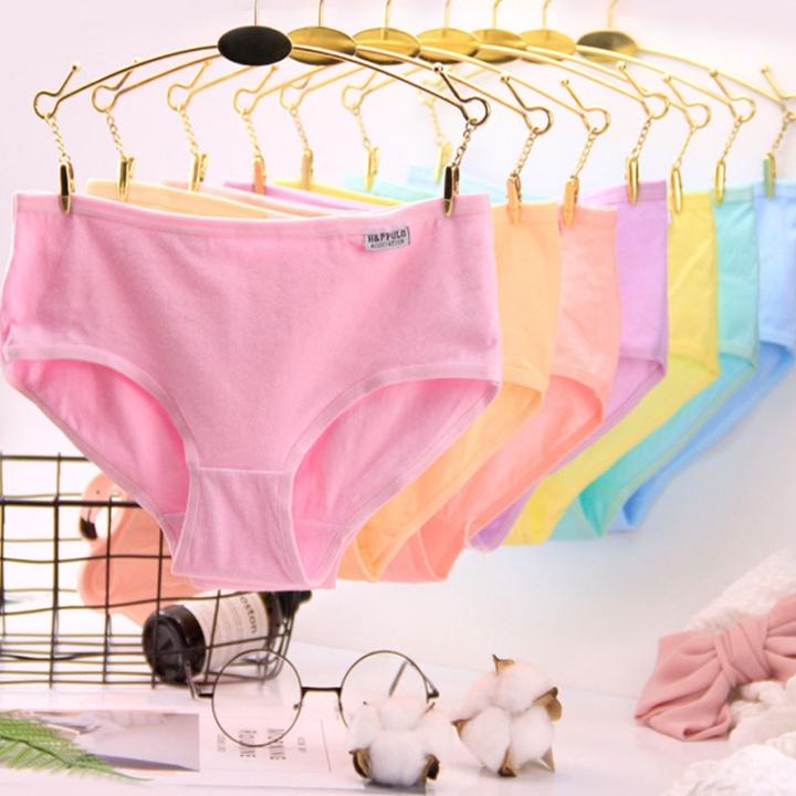5  Pack Women's Cotton Underwear Beyond Soft Briefs Panties 5 pcs colors random xxl(60-80kg)