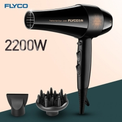 FH6105 Electric Hair Dryer Styling Tools Blow Dryer Low Noise Hair Salon Hot/Cold Wind as shown one size
