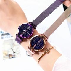 Japanese movement, trend net with magnet quartz waterproof watch Roman luminous lady watch (Champagne gold) one size