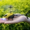 Mini RC 901 Helicopter Shatter Resistant 2.5CH Flight Toys with Gyro System as picture one size