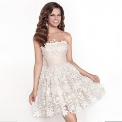 Elegant Lace Off The Shoulder Mini Dress  Party Birthday Gown Dress White s