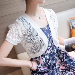 Size S-XL 2016 Women's Short Sleeve Crochet Shrug Lace Hollow Out Many colors Tassel Sweater Cape