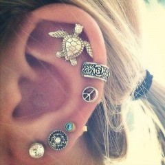 6pc/set Punk Style Silver Color Animal Tortoise Earring Sets Ethnic Gothic Skull Ear Clip Stud Ea as photo 6pc/set