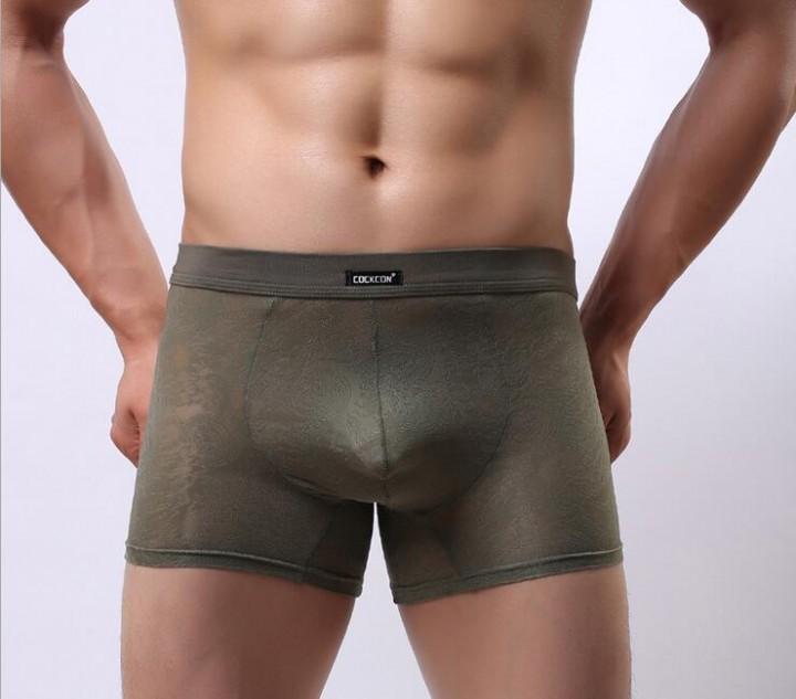 e642e918f40 Elephant Boxers Men Brand Lace Panties Sexy Transparent Mens Underwear  Boxer Shorts Bulge Big Pen