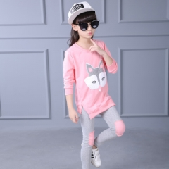 Children's clothing set girl long sleeve T-shirt + pants 2 pcs cartoon sportswear girls leisure set pink 120cm