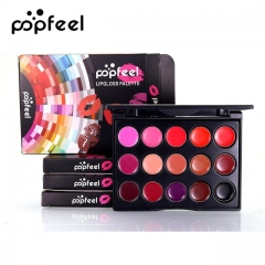 Plate Matte Makeup 15 Color Waterproof Lipstick Sets Matte Long Lasting Nude Lip Gloss Tint Palette as picture