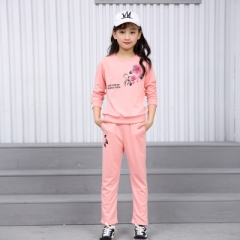 Girls Clothing Sets Long Sleeve T-Shirts & Leggings 2 Pcs Tracksuits Casual Kids Sports Suits pink 110cm