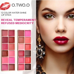 12-Colors Lip Gloss Set Plate Matte Makeup Waterproof Lipstick Sets Matte Water Shine Nude Lip Gloss #01