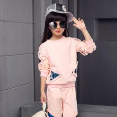 Teenage Girls Clothes Children Clothing Set Cotton Sweatshirt + Pants Two-Piece Girls Clothes Suit pink 110cm