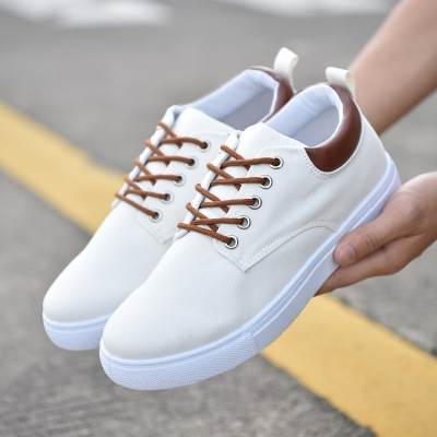 Comfortable Casual Shoes Mens Canvas Shoes For Men Lace-Up Brand Fashion Flat Loafers Shoe white 45