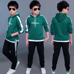 Boys Clothing Set for Kids Casual Letter Hooded Velvet Autumn Spring Children's Sports Suits green 120cm/5t