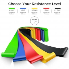 FH Brand Suitable for  Resistance Loop Exercise Bands  Instruction Guide, Carry Bag, Set of 5 Yellow、Red、Blue、Green、Black 30*5cm