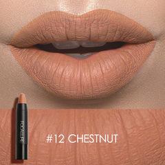 Matte Lipstick Waterproof Long-lasting Easy to Wear Maquiagem Profesional Lipstick Nude Lips 12