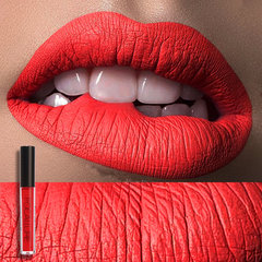 Matte Liquid Lip Gloss Matte Lipsick Long Lasting Waterproof Cosmetic Beauty Makeup Keep Lipgloss 1