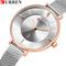 Ladies Dress Mesh Watches Fashion Slim Stainless Steel Wrist Watch For Women Female Quartz Clock 02 one size