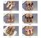 Women's Flip-Flops Cork Boken Sequin Slippers black 35