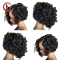 ON SALE...Afro Kinky Curly Wig Synthetic Wigs for Women Black Natural Afro Hair black free size
