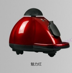 JIQI Steam cleaner Cleaning machine Disinfector Sterilization machine Iron Anti mites lots accesory red 50cm x 31cm x 33cm