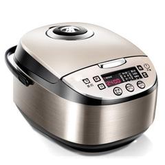 DMWD  4L Intelligent Rice Cooker Electric Food Steamers Automatic Cake Maker Reservation 0-24 Hours 220v
