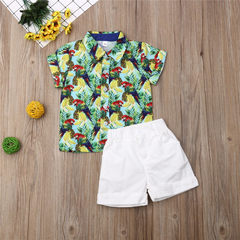 Casual Set Toddler Kids Boys Pineapple Banana Parrot Shirt Tops+Shorts Set Outfits Clothes 2PCS Green GH495A 90