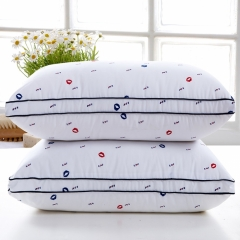 RedYoungth Adjustable - removable polyester cover for hypersensitive memory foam pillow soft Lip Print 48*74 cm