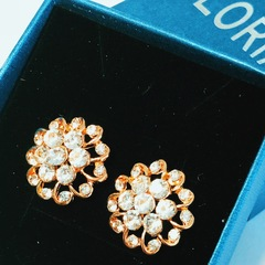 Floriane New Noble Luxurious India Court Style  Rhinestone  Ear studs  Earring see pictures see information below