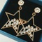 Floriane New Noble Luxurious Five-Pointed  Star Shape Two Colour Earring Jewellery golden see information below