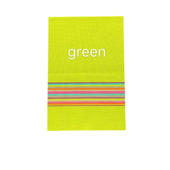 Floriane New High Quality Modern High Temperature Resistance Placemat Two Color 1 Pc H040 green 44.5*29.5cm