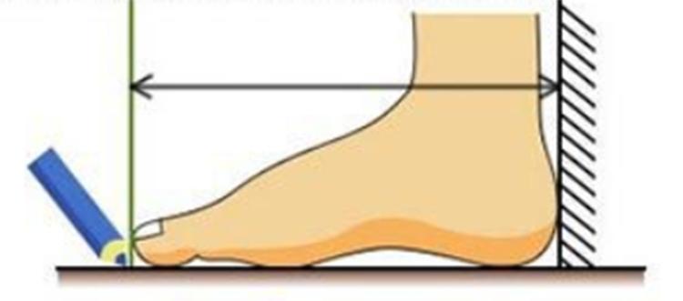 shoes women ladies shoes heels boots ladies shoes boots ladies heels Boots Martin boots women's lace brown 41 3