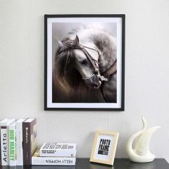 Animal Embroidery DIY Diamond Painting Horse Patterns Needlework Kits Decor