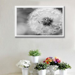 DIY 5D Diamond Embroidery Paste Picture Painting Home Decoration Dandelion