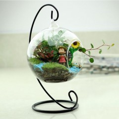 Round Ball With One Hole Hydroponic Plant Flower Hanging Glass Vase Container clear 9cm